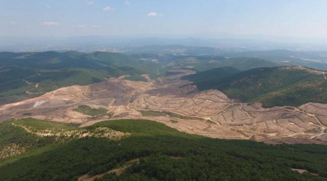 """""""Kazdağları'nda 3.5 milyon ağaç kesilecek"""""""