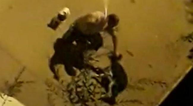 İzmir ayağa kalktı: Köpeğe boruyla dayak!