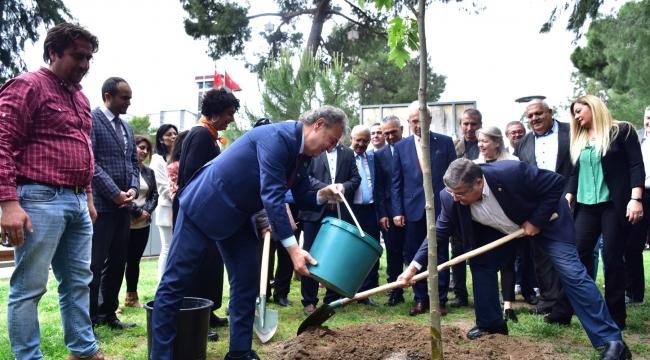 Daha yeşil bir Bornova için: 5 ayda 5 bin fidan