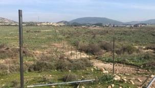 Foça'da 'tel örgü' bilmecesi: Organik tarım mı, biyokütle santraline hazırlık mı?