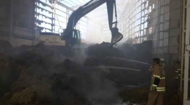 Bergama'da besi çiftliğinde 2 milyon kül oldu!